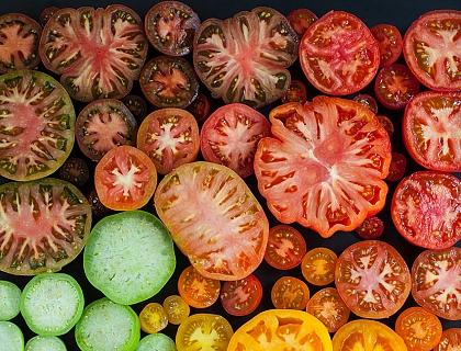 Costillas de cordero y tomates confitados